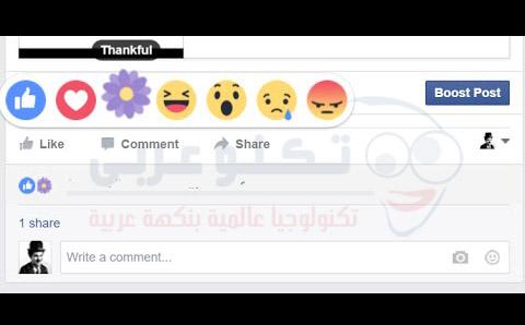 سر اضافة الوردة البنفسجية لإيموشن الفيس بوك