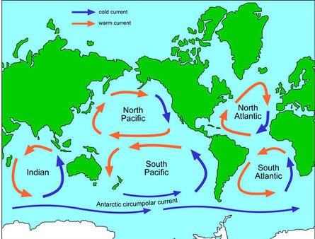 The five major gyres