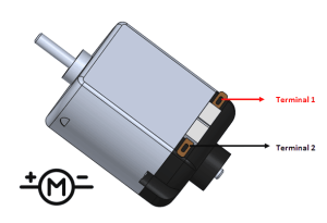 physical view of a DC motor with its terminals outlined