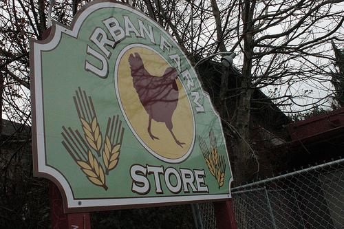 Urban Farm Store by maggiekate
