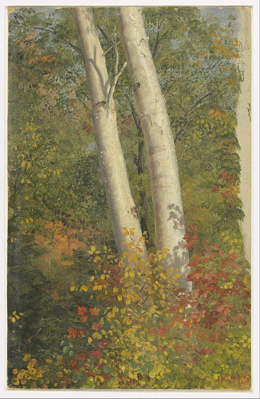 Birch Trees in Autumn - 1865