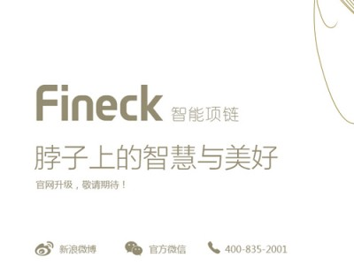 fineck 2