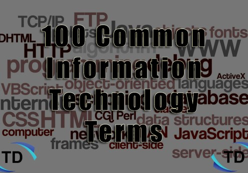 100-Common-IT-Terms