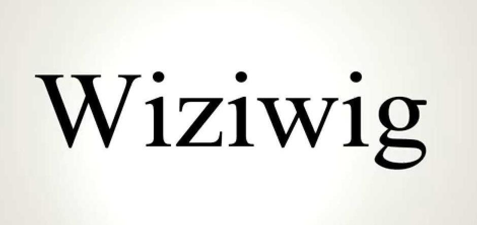 Wizwig
