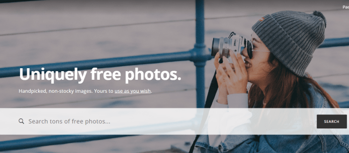 best royalty free stock images