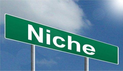 Define Niche