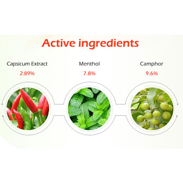Ingredients of Pain Relief Capsicum Patches