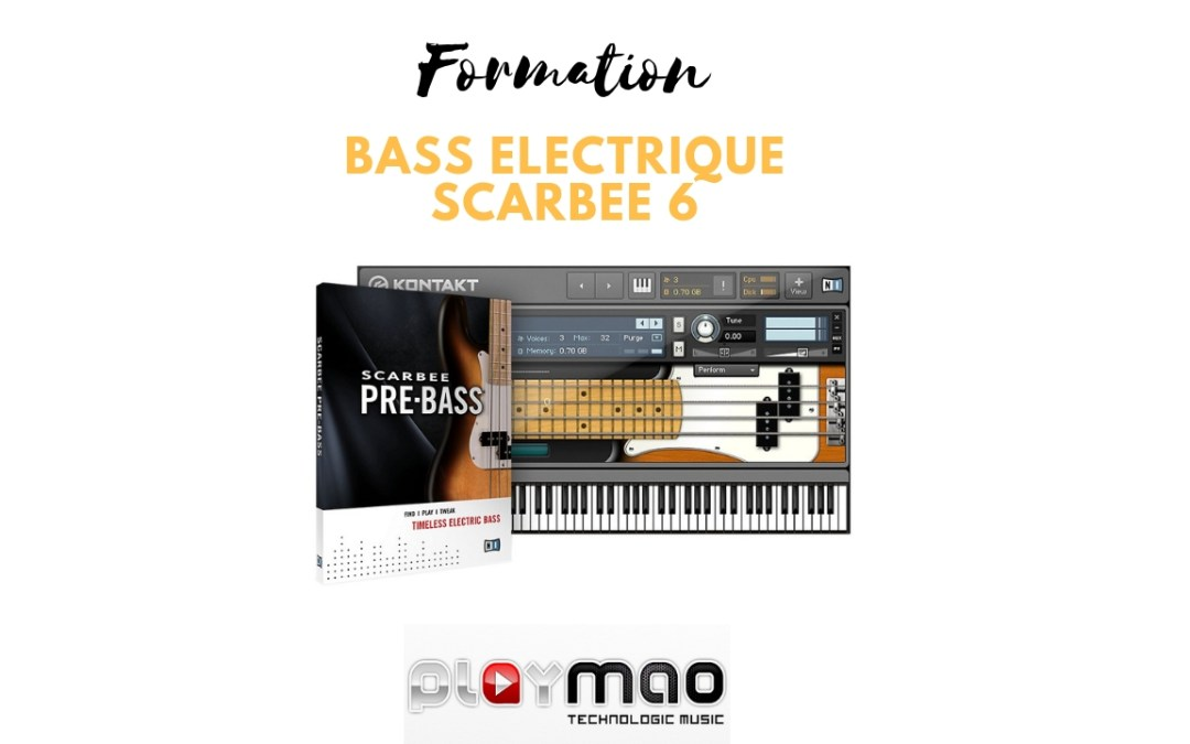 Formation Native Instruments Scarbee Pre Bass