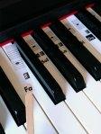 La pratique du piano : Déliateur numéro 1