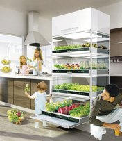 This recent unveiling by Hyundai seems to be the perfect way to add a bit of green to your living space. Called the Kitchen Nano Garden, this concept enables you to add a garden to your apartment kitchen without too much of a hassle! The Kitchen Nano Garden works as a perfect solution to urban gardening and sports tiered metal shelves, climate control panels, and water source attachments too!  Click the picture for more images.