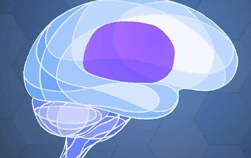 फेसबुकले मानिसको मस्तिष्क पढ्न सक्ने डिभाइस परीक्षण गर्दै, सोचेको भरमा नै टाइप गर्ने