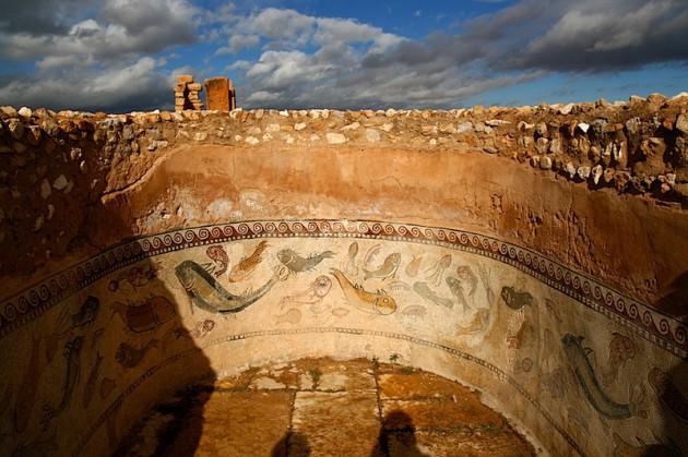 Fish mosaic at Sbeitla