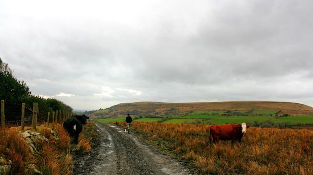 Lygos Farm, , HDR