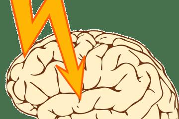 brain clip art png image