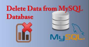 delete data from mysql database