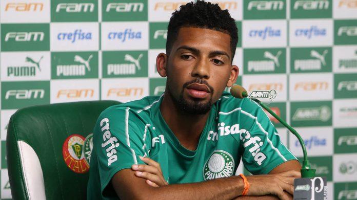 Matheus Fernandes Siqueira