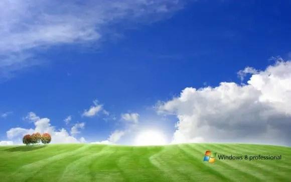 Windows 8 Bliss