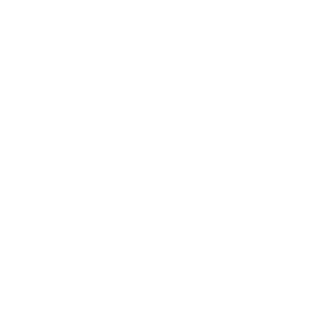 logo white technowatch