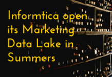 Informtica open its Marketing Data Lake in Summers