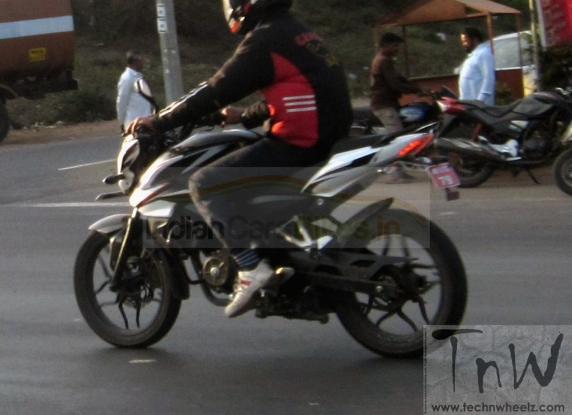 Bajaj Pulsar 150 spy pic rear