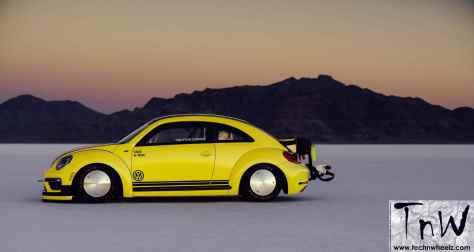 Beetle LSR 1