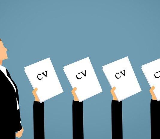 Jobs, CV, Employment