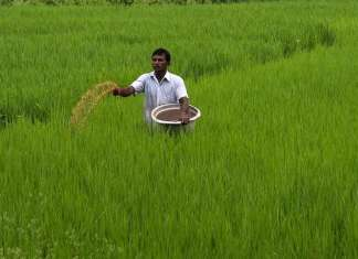Agriculture, Fertiliser, Agri-startup, farmer
