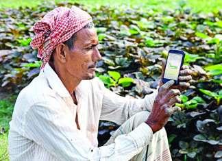 Digital Farmer