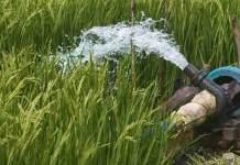 Telangana picks global tech innovators to pump state agri sector