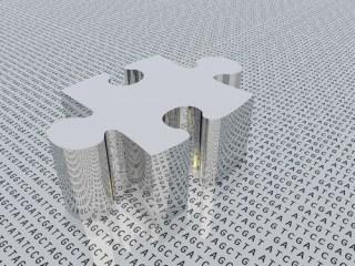 Genetic puzzle image via Shutterstock