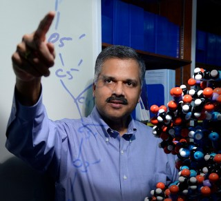 Director of Computational Biology Ajay Royyuru points to a drawing of the chemical formula for DNA at IBM Research headquarters in Yorktown Heights, NY. (Courtesy IBM Research)