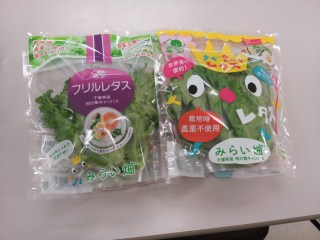 "Packaged ""plant factory""-grown greens are sold in Japan as a premium product–consistent quality and sustainably-grown."