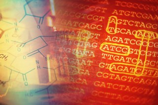Interpreting the results of genetic testing remains as much art as science. (Image courtesy Shutterstock)