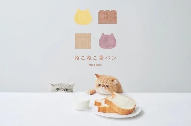 オールハーツ・カンパニー ねこねこ食パン