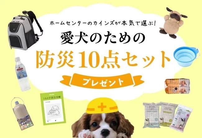 カインズ、WanQolプレゼントキャンペーンも同時スタート!愛犬のための「防災グッズ」10点セットが当たる