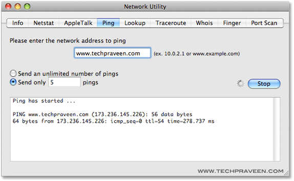 Ping a Website using Network Utility