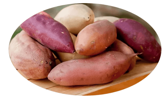 Sweet Potatoes.png