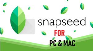 SnapSeed For PC Windows & Mac Download