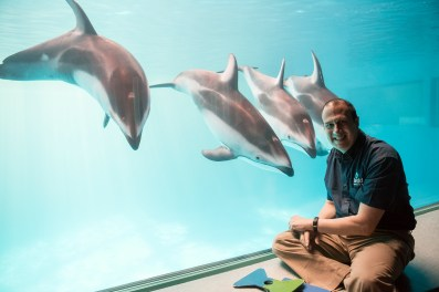 Ken Ramirez and Dolphins via Shedd and Brenna Hernandez