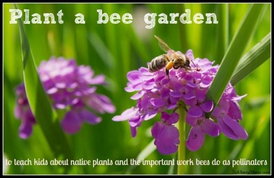 Plant a Bee Garden