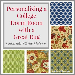 Personalizing a College Dorm Room with a Great Rug Under $100 (w. discount from Wayfair.com)