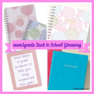 momAgenda: Busy Mom Must-Have for the Upcoming School Year (w. giveaway)