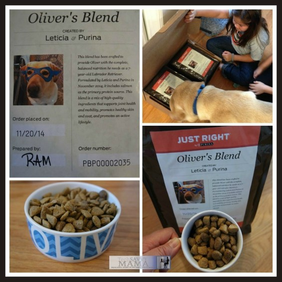Just Right by Purina Oliver's Blend