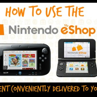 Nintendo eShop Delivers Content Conveniently to WiiU and DS