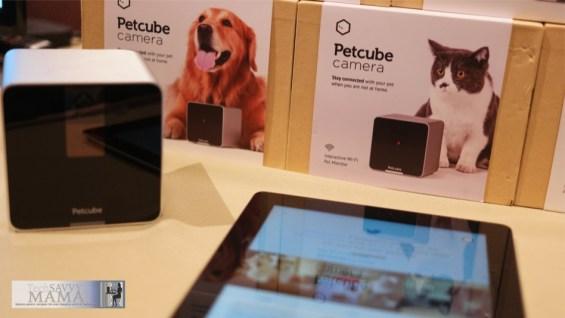 PetCube Pet Monitoring at CES 2015