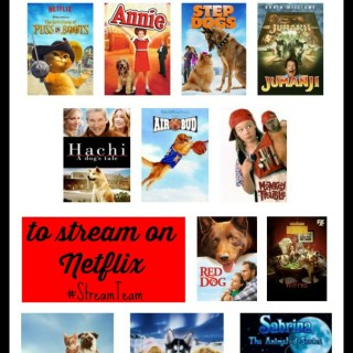 Streaming Cats & Dogs? 22 Movies for Animal Lovers to Stream on Netflix #StreamTeam