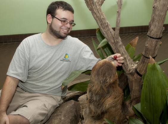 Kenton Kerns, Small Mammal House Biologist at the Smithsonian National Zoo with Linnaeus's Two-toed Sloth