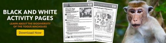 Free Monkey Kingdom Educators' Guide free from Disneynature