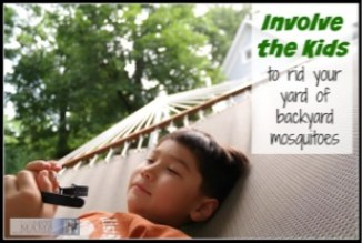 Involve the kids to rid your yard of backyard mosquitoes and ticks