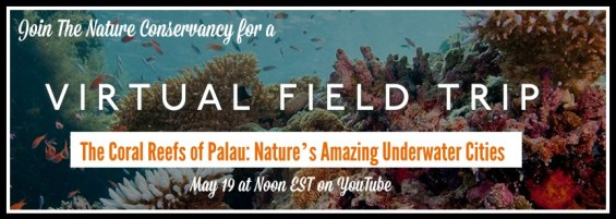 Visit Palau's Coral Reefs on a Virtual Field Trip with The Nature Conservancy